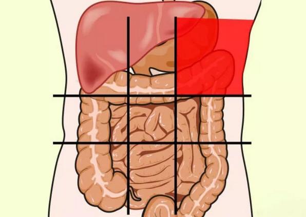 Карта болей в животе и как по ней не пропустить начало болезни