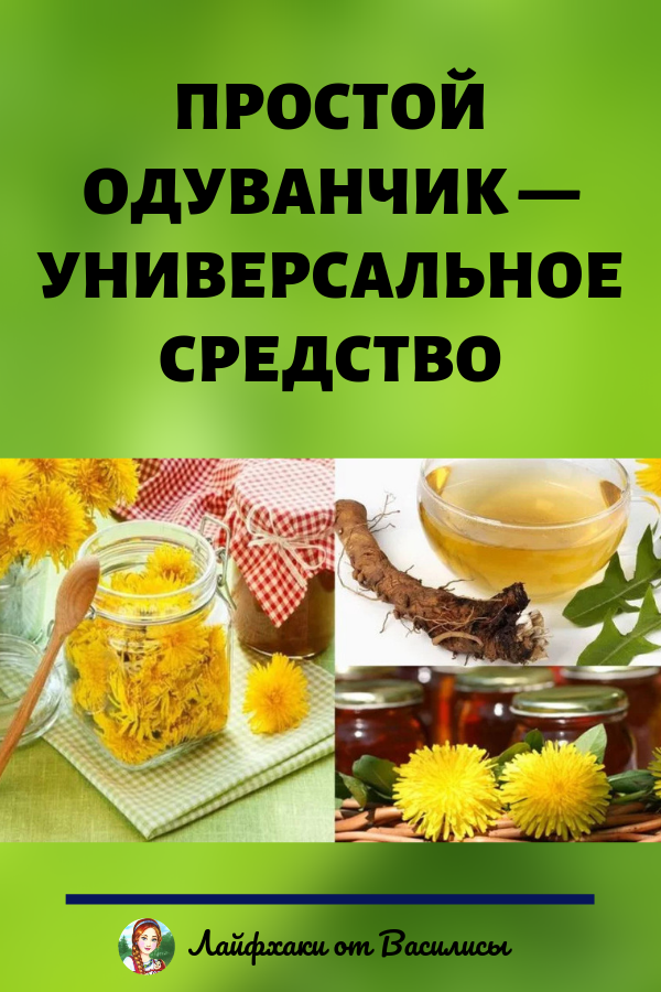 Лечение одуванчиком для улучшения обмена веществ