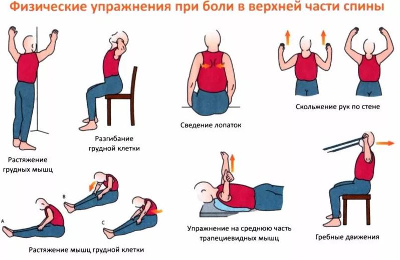 Как избавиться от боли в спине в домашних условиях: 9 упражнений для позвоночника от Норбекова