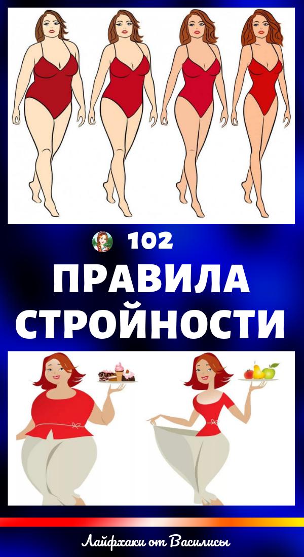 102 правила стройности. Красота, здоровье и похудение в домашних условиях