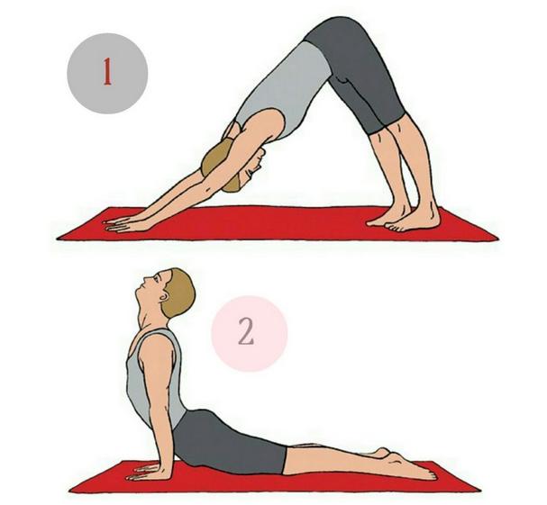 Утренние асаны йоги для начинающих: 8 упражнений