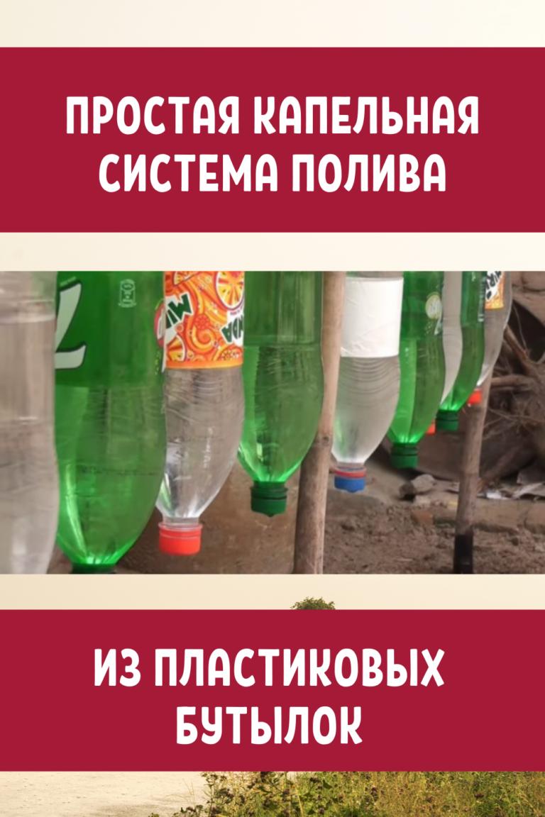 капельный полив пластиковыми бутылками все гениальное просто