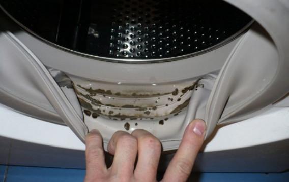 Как вывести плесень из стиральной машинки...
